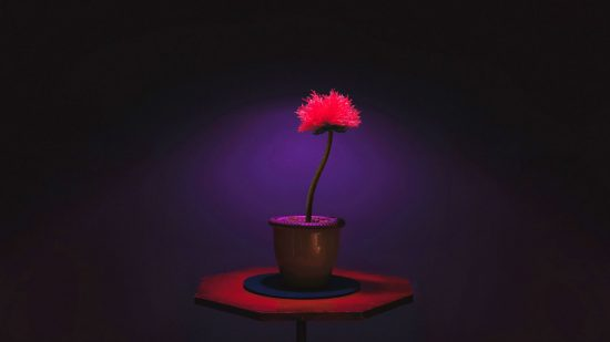 Little Joe fleur